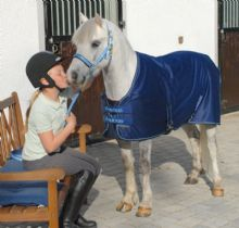 Bucas Pony Shamrock Power Rug